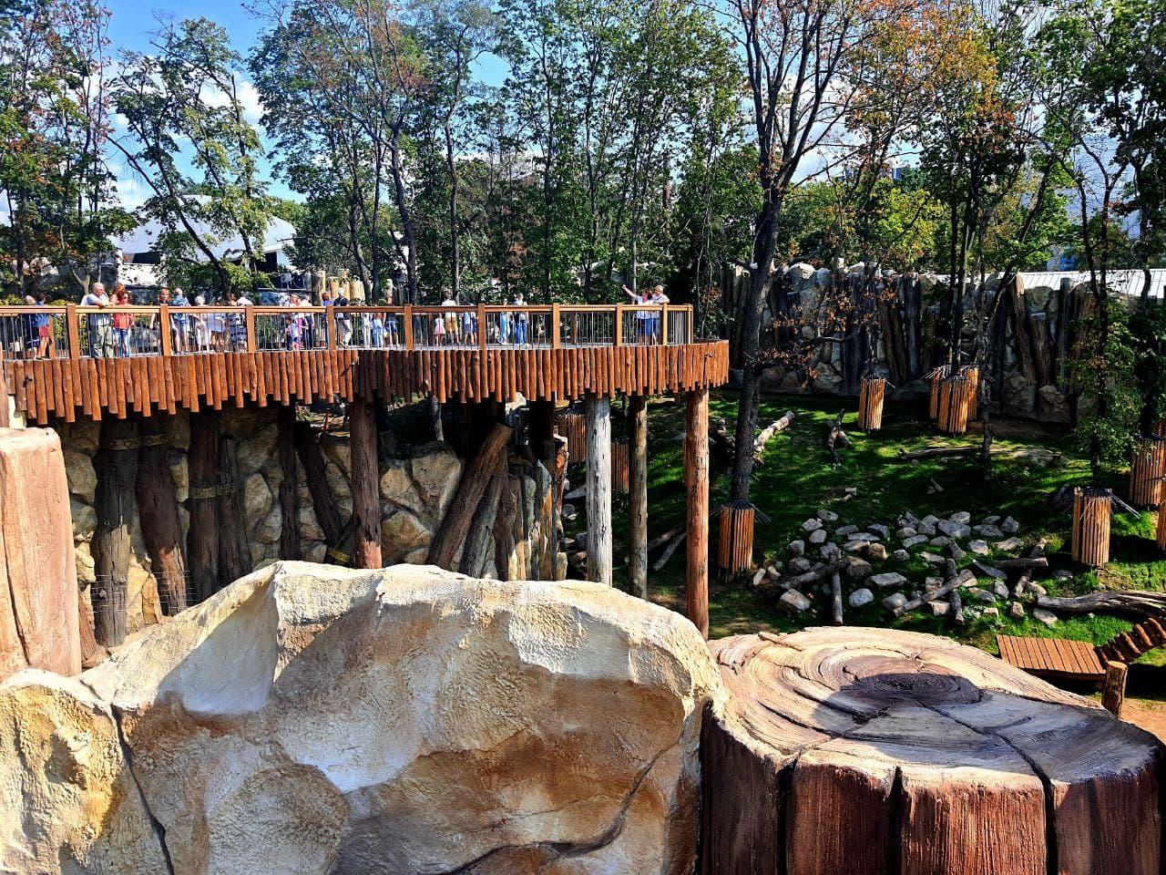 Смотри фото и видео: в Харькове открыли зоопарк после реконструкции фото 3